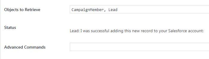 Screenshot of status message for successfully adding a lead to Salesforce from WordPress